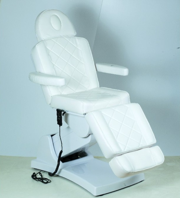 Electric Facial Bed 2431(3P)
